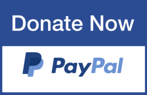 Donate to us using paypal.